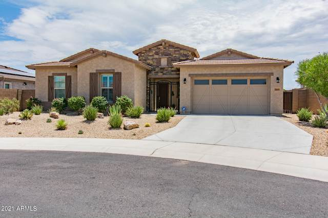18443 W Verbena Drive, Goodyear, AZ 85338 (MLS #6272025) :: Yost Realty Group at RE/MAX Casa Grande