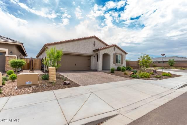 11563 W Andrew Lane, Peoria, AZ 85383 (MLS #6272048) :: Yost Realty Group at RE/MAX Casa Grande