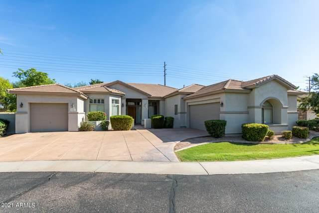 2041 W Marlin Drive, Chandler, AZ 85286 (MLS #6272053) :: Yost Realty Group at RE/MAX Casa Grande