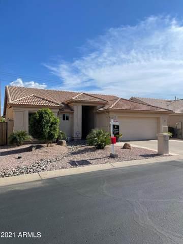 15235 W Verde Lane, Goodyear, AZ 85395 (MLS #6272056) :: Conway Real Estate