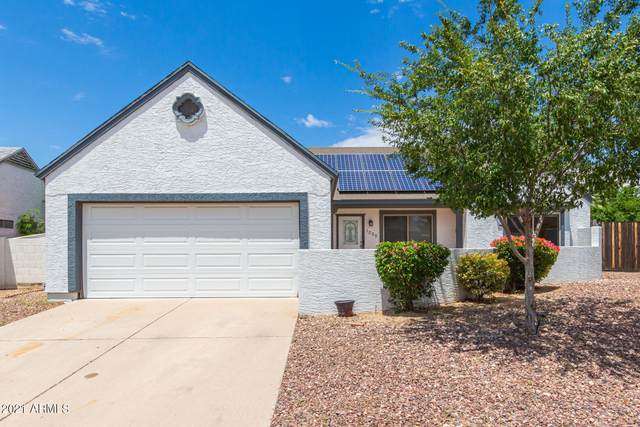 1008 E Wickieup Lane, Phoenix, AZ 85024 (MLS #6272060) :: Yost Realty Group at RE/MAX Casa Grande
