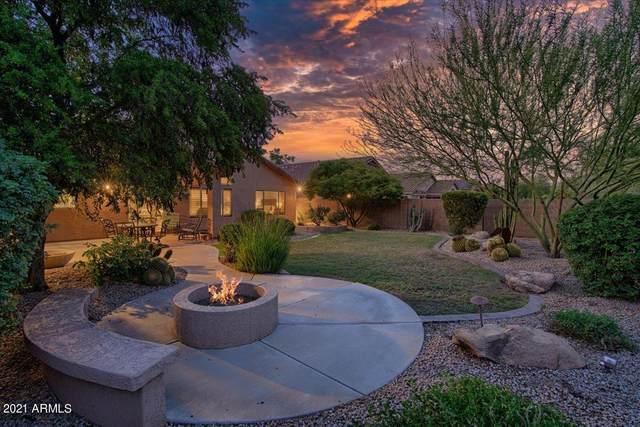 4427 E Thorn Tree Drive, Cave Creek, AZ 85331 (MLS #6272061) :: Yost Realty Group at RE/MAX Casa Grande