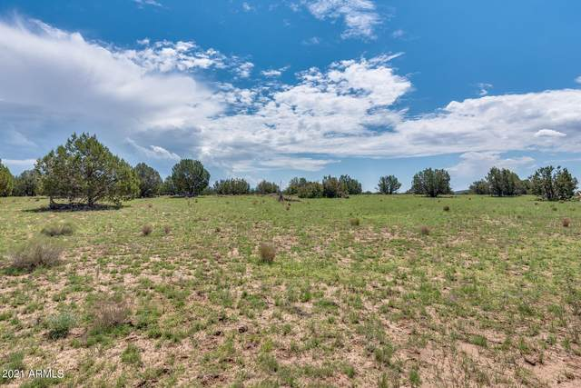 25 S Indian Springs Road, Ash Fork, AZ 86320 (MLS #6272067) :: The Newman Team