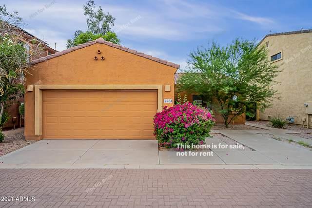 7231 S Golfside Lane, Phoenix, AZ 85042 (MLS #6272088) :: Service First Realty