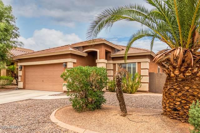 12918 W Columbine Drive, El Mirage, AZ 85335 (MLS #6272092) :: Power Realty Group Model Home Center