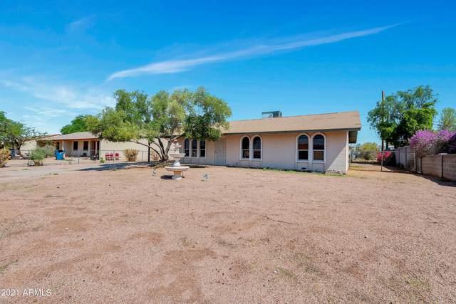 538 E Quail Avenue, Apache Junction, AZ 85119 (MLS #6272095) :: The Laughton Team
