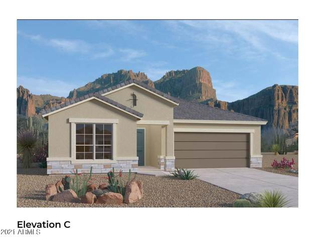 38233 W Santa Barbara Avenue, Maricopa, AZ 85138 (MLS #6272097) :: Yost Realty Group at RE/MAX Casa Grande