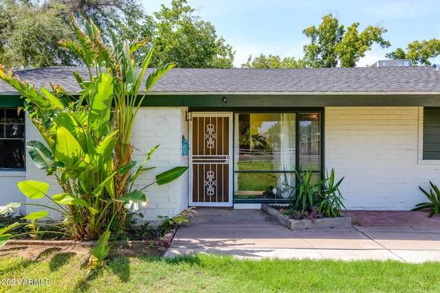 1111 W Bethany Home Road, Phoenix, AZ 85013 (MLS #6272118) :: Yost Realty Group at RE/MAX Casa Grande