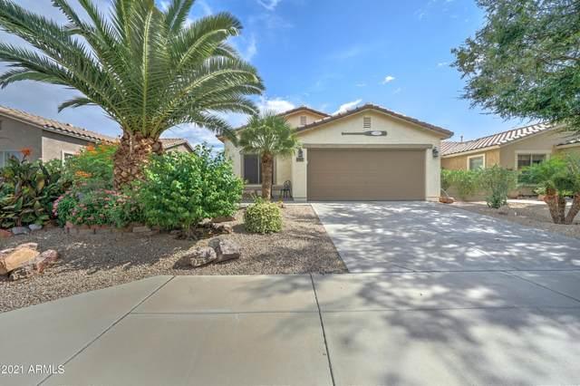 2767 W Kristina Avenue, Queen Creek, AZ 85142 (MLS #6272124) :: Relevate | Phoenix