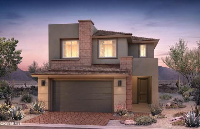 3554 E Louise Drive, Phoenix, AZ 85050 (MLS #6272130) :: Yost Realty Group at RE/MAX Casa Grande