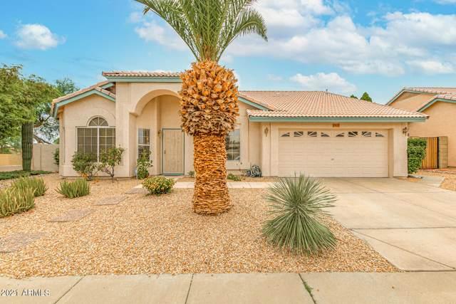 17432 N 43RD Street, Phoenix, AZ 85032 (MLS #6272132) :: Yost Realty Group at RE/MAX Casa Grande
