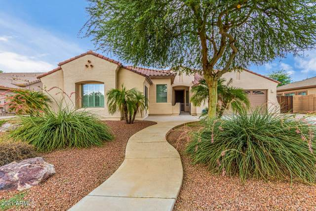 869 N Thunderbird Avenue, Gilbert, AZ 85234 (MLS #6272155) :: Yost Realty Group at RE/MAX Casa Grande