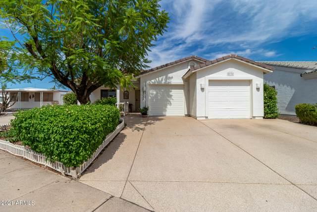 2131 N Shannon Way, Mesa, AZ 85215 (MLS #6272170) :: Service First Realty