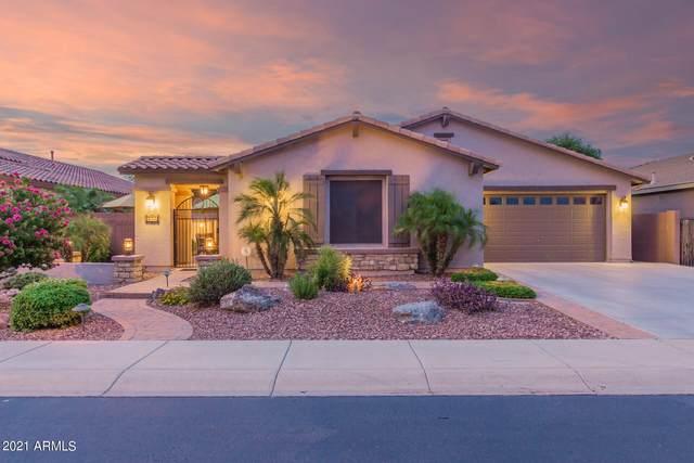 594 W Lyle Avenue, Queen Creek, AZ 85140 (MLS #6272188) :: Klaus Team Real Estate Solutions