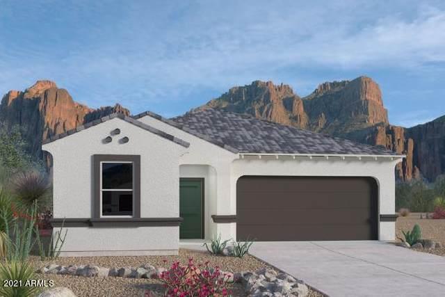 3579 N Montoya Lane, Casa Grande, AZ 85122 (MLS #6272190) :: Selling AZ Homes Team