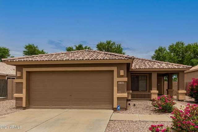 3668 E Los Altos Road, Gilbert, AZ 85297 (MLS #6272239) :: Keller Williams Realty Phoenix