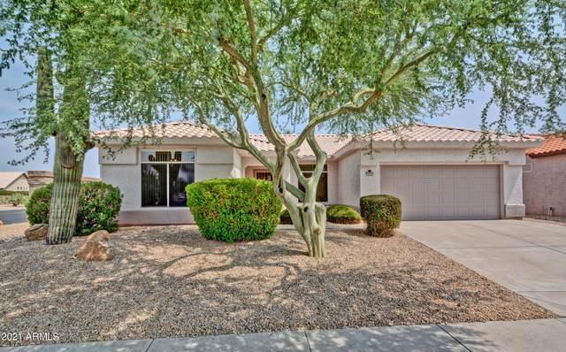 14232 W Gunsight Drive, Sun City West, AZ 85375 (MLS #6272253) :: Executive Realty Advisors