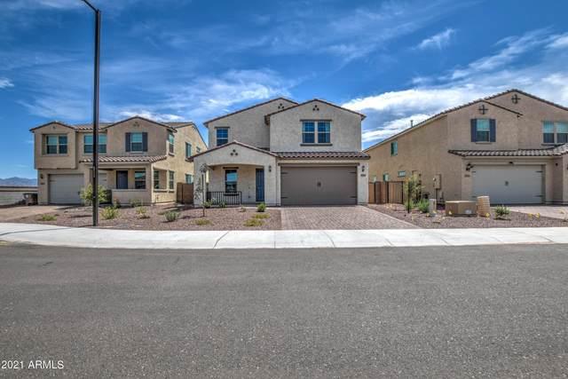 17959 W Encinas Lane, Goodyear, AZ 85338 (MLS #6272261) :: D & R Realty LLC