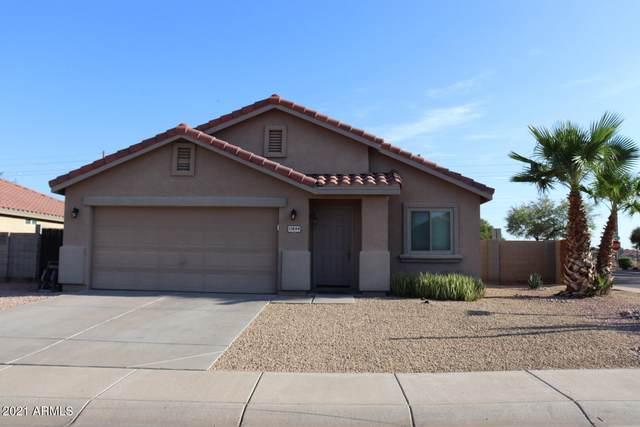 11844 W Edgemont Avenue, Avondale, AZ 85392 (MLS #6272286) :: Scott Gaertner Group