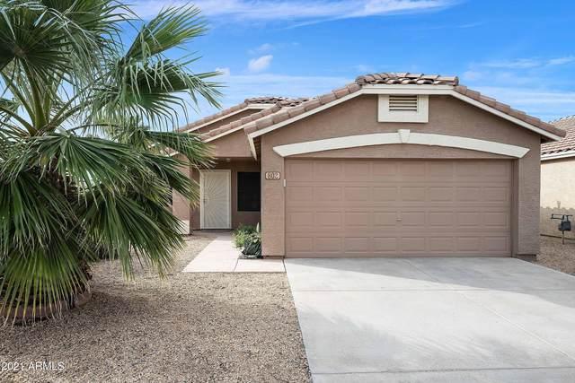 802 E Potter Drive, Phoenix, AZ 85024 (MLS #6272299) :: Selling AZ Homes Team