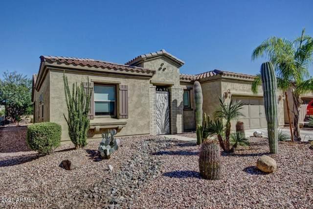 12882 W Alyssa Lane, Peoria, AZ 85383 (MLS #6272333) :: The Riddle Group
