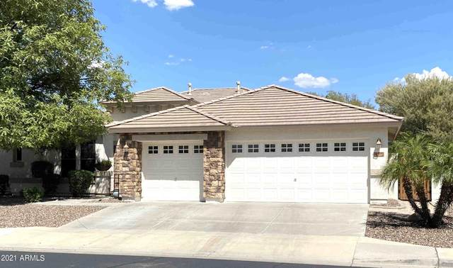 5615 N 134TH Drive, Litchfield Park, AZ 85340 (MLS #6272334) :: Yost Realty Group at RE/MAX Casa Grande