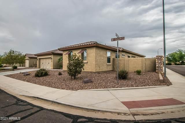 3690 E Canyon Way, Chandler, AZ 85249 (MLS #6272344) :: Service First Realty