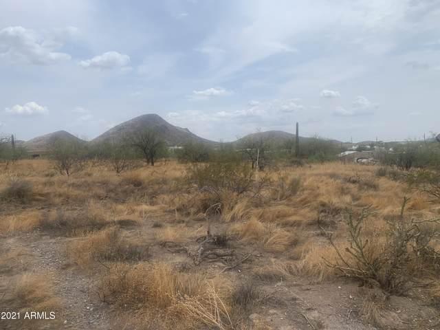 443XX N 22nd Street, New River, AZ 85087 (MLS #6272356) :: Selling AZ Homes Team