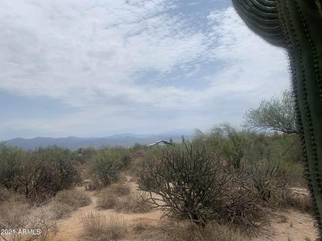 27XXX N 162 0 Street, Scottsdale, AZ 85262 (MLS #6272383) :: Selling AZ Homes Team