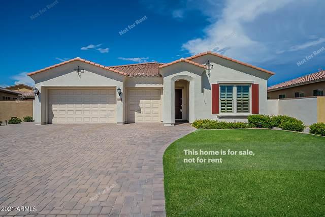 10404 E Gamma Avenue, Mesa, AZ 85212 (MLS #6272385) :: The Laughton Team