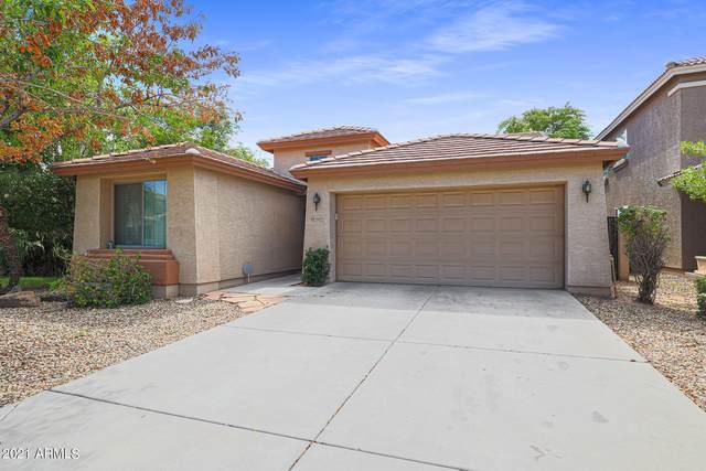 4608 S 26TH Lane, Phoenix, AZ 85041 (MLS #6272390) :: Selling AZ Homes Team