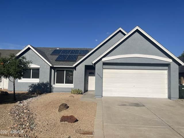 19407 N 8th Avenue, Phoenix, AZ 85027 (MLS #6272427) :: Selling AZ Homes Team