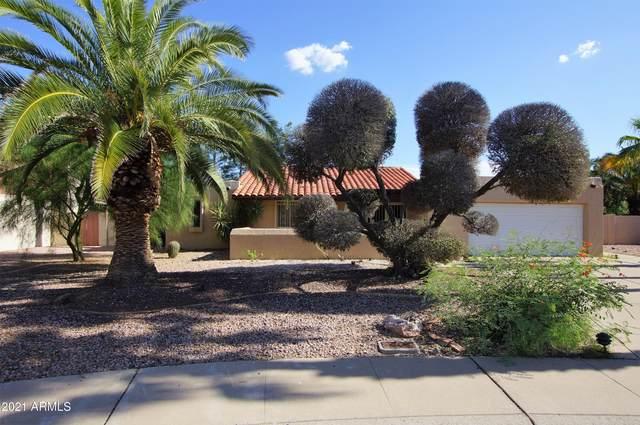 4317 E Ludlow Drive, Phoenix, AZ 85032 (MLS #6272441) :: Keller Williams Realty Phoenix