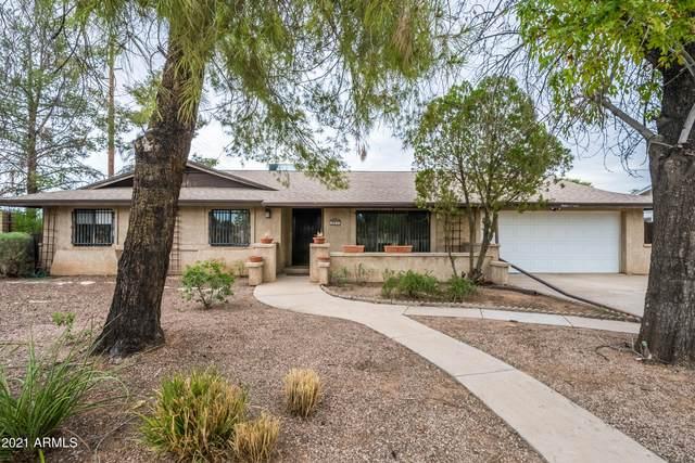 1211 S Barkley, Mesa, AZ 85204 (MLS #6272446) :: Arizona 1 Real Estate Team