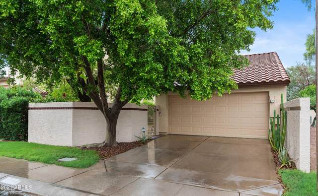 11064 N 109TH Street, Scottsdale, AZ 85259 (MLS #6272459) :: Yost Realty Group at RE/MAX Casa Grande