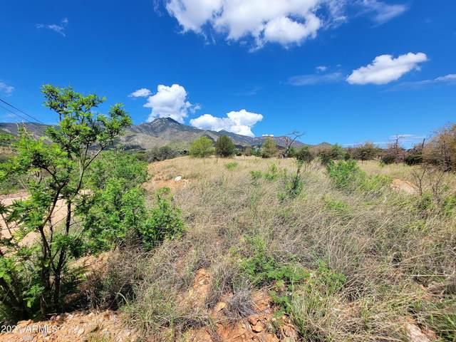 --- Mountain View Road, Hereford, AZ 85615 (MLS #6272460) :: The AZ Performance PLUS+ Team