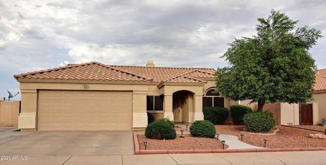 5521 N 103RD Drive, Glendale, AZ 85307 (MLS #6272475) :: The Laughton Team