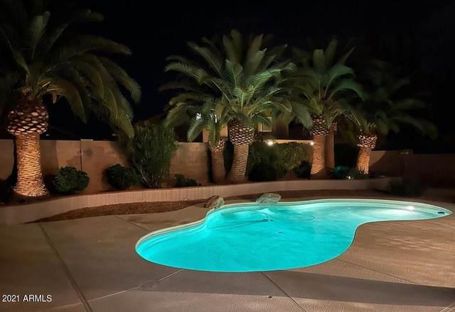 8836 W Salter Drive W, Peoria, AZ 85382 (MLS #6272499) :: Yost Realty Group at RE/MAX Casa Grande