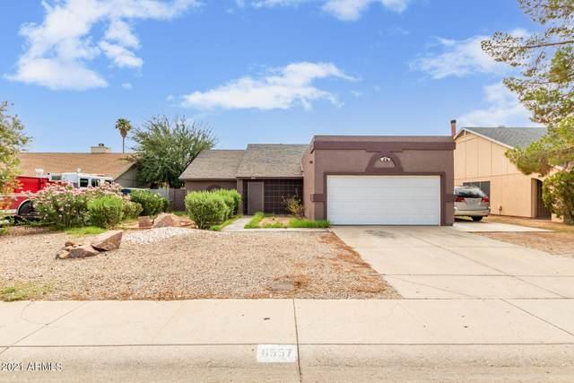 6557 N 73RD Avenue, Glendale, AZ 85303 (MLS #6272502) :: The Laughton Team