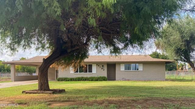18722 E Via Del Oro, Queen Creek, AZ 85142 (MLS #6272509) :: Keller Williams Realty Phoenix