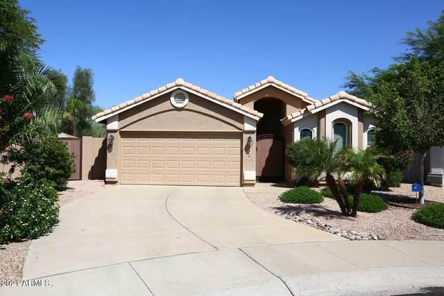 9204 E Windrose Drive, Scottsdale, AZ 85260 (MLS #6272564) :: Keller Williams Realty Phoenix