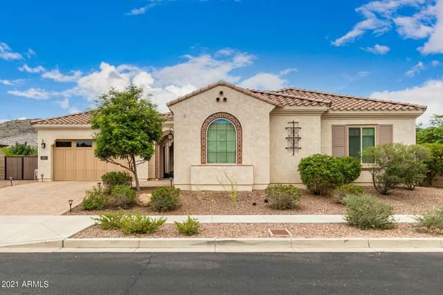 2927 E Constance Way, Phoenix, AZ 85042 (MLS #6272565) :: Service First Realty