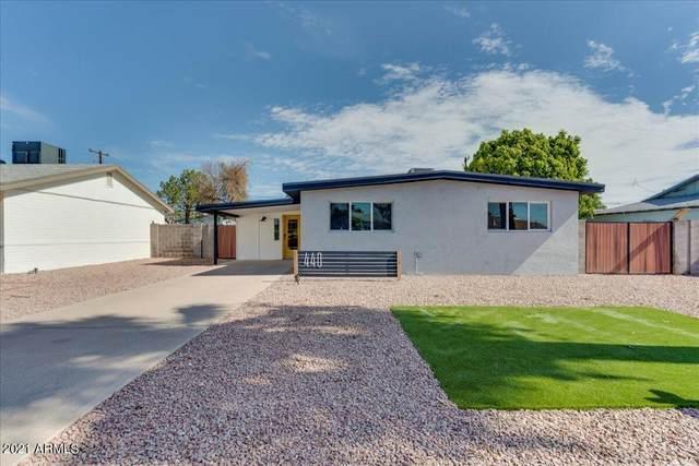 440 E Beatryce Street, Tempe, AZ 85281 (MLS #6272566) :: Conway Real Estate