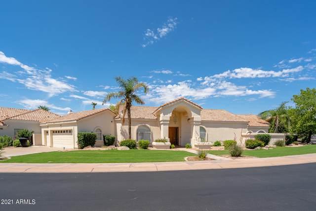 11410 E Terra Drive, Scottsdale, AZ 85259 (MLS #6272589) :: Yost Realty Group at RE/MAX Casa Grande