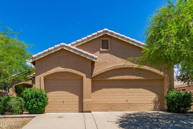 817 S Del Rancho Street, Mesa, AZ 85208 (MLS #6272603) :: Yost Realty Group at RE/MAX Casa Grande