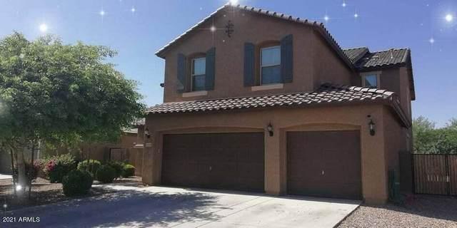 12168 W Locust Lane, Avondale, AZ 85323 (MLS #6272611) :: Yost Realty Group at RE/MAX Casa Grande