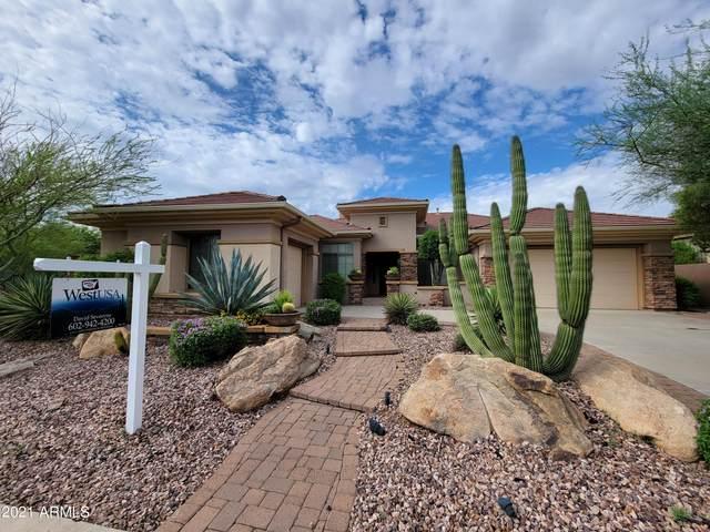 1223 W Spirit Drive, Phoenix, AZ 85086 (MLS #6272687) :: Yost Realty Group at RE/MAX Casa Grande
