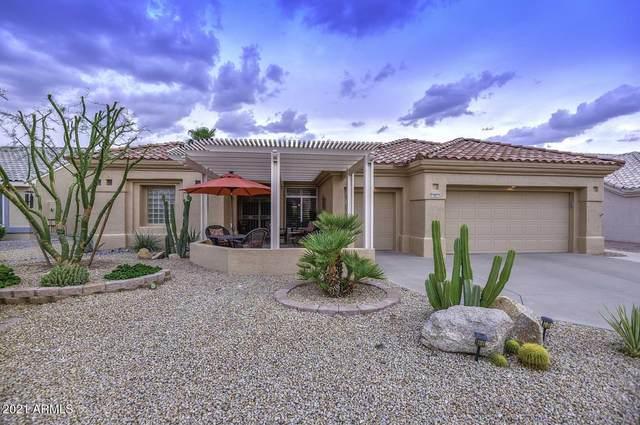 14831 W Carbine Way, Sun City West, AZ 85375 (MLS #6272744) :: The Copa Team | The Maricopa Real Estate Company