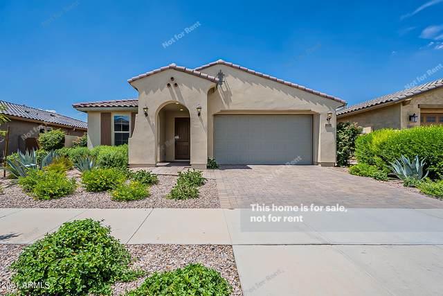 10420 E Durant Drive, Mesa, AZ 85212 (MLS #6272781) :: Keller Williams Realty Phoenix