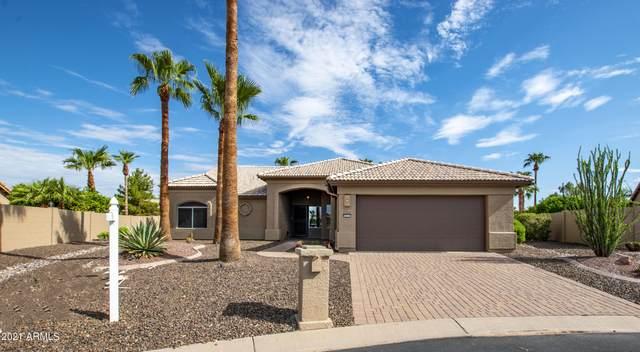 3513 N Snead Drive, Goodyear, AZ 85395 (MLS #6272815) :: West USA Realty
